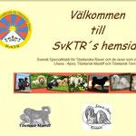 Schweden TT-Club