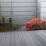 リビングから眺める中庭