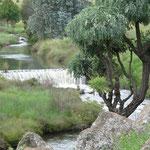 Der Fluss durchquert das gesamte Farmgelände