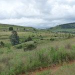 Blick über die Farm