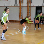 Volleybas - Artegna   3:0
