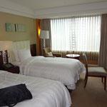 ロッテホテル・ソウルに13時半到着。