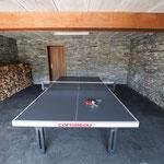 Tennis de table (extérieur)