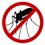 Mückenschutz im Vietnam Urlaub