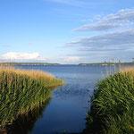 Ein Bodden auf Rügen: Binnensee mit Zugang zum Meer.
