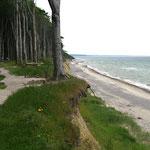 Am Strand von Nienhagen weht der Wind oft so stark, ...