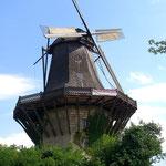 Unerwartet, aber wahr: Windmühle in Potsdam