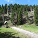 einige Kilometer vor der Feistritzer Alm begann unsere Wanderung