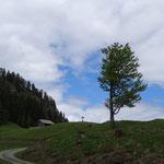 Ziel in Sicht -Napalnalm