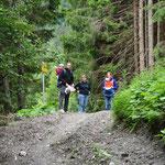 über den Forstweg wanderten wir dann weiter