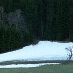 die letzten Schneereste vor unserem Haus