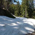 Schnee auf den Forstwegen