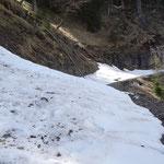 teilweise noch Schnee auf dem Forstweg