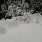 höher oben liegt mehr Schnee
