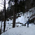Hinauf durch den Wald, immer wieder umgestürzte Bäume aufgrund der Schneemassen
