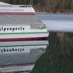 """der """"Winter-Ruheplatz"""" der Alpenperle wurde eisfrei gehalten"""