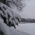 Am 2. Jänner ein wenig Neuschnee
