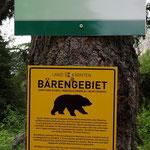 Bär haben wir keinen begegnet