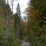 Weg durch den Gösseringgraben