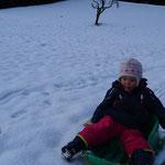 Bildergalerie vom ersten Schnee