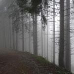 Nebel am Anfang unserer Wanderung