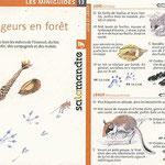 """miniguide La Salamandre """"indices de rongeurs en forêt"""""""