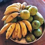 Fruits en abondance