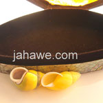 Maha Lakshmishank, Heera Shank verkauft