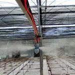 Pflanzenzucht - Pilzfarmen