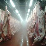 Lebensmittelindustrie - Hochdruck - Prozessoptimierung/Kühlung
