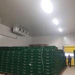 Kühlhaus - Hochdruck - Konditionierung