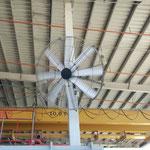 oszilierender Ventilator