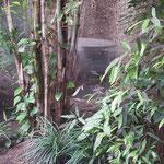 Zoologischer Garten - Hochdruck - Luftkonditionierung