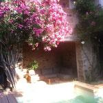Terrasse du jardin