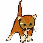 junge Katze braun, 73x99mm, 6465 Stiche