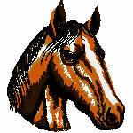 Pferdekopf , 102x114 mm, 13683 Stiche, nicht ganz gefüllt, am besten auf beige oder terra