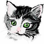 Katzenkopf schwarz grau, 100x100 mm, 13123 Stiche