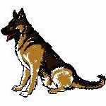 Schäferhund sitzend, 111x131mm, 6185 Stiche,  nicht ganz ausgefüllt