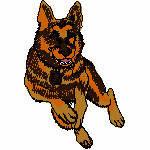 Schäferhund laufend, 67x99 mm, 11349 Stiche
