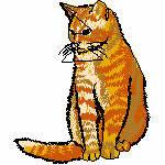 Katze gelbbraun sitzend, 80x95 mm, 9755 Stiche