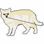 weiße Katze, 99x63 mm, 7559 Stiche