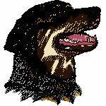 Rottweiler Kopf, 90x98 mm, 13471 Stiche