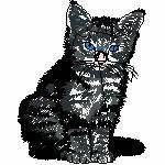 Katze sitzend, 93x118 mm, 12719 Stiche