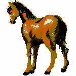 Pferd 1 , 80x96mm, 9422 Stiche