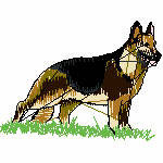 Schäferhund im Gras, 97x72 mm, 5932 Stiche