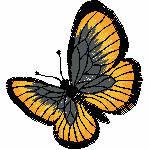 1 Schmetterling orange, 67x74 mm, 5715 Stiche, andere Farben der Stickerei möglich z.b, rot , blau