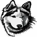 Husky Kopf, 96x97 mm, 10756 Stiche