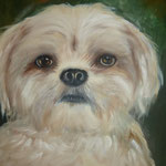 Hondje verkocht (40x40 cm)