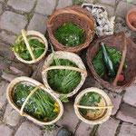 gesammelte Kräuter für das Essen