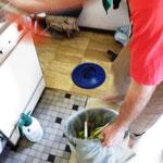 Küchenabfälle